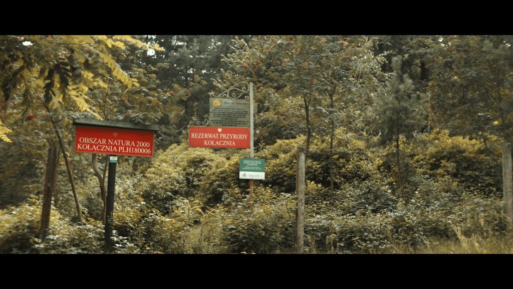 """Kadr z filmu promującego walory turystyczno-przyrodnicze powiatu leżajskiego """"Przyjedź i zostań na dłużej!"""", Rezerwat Kołacznia."""